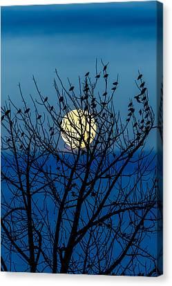 Moon Canvas Print - Full Moon by Bob Orsillo