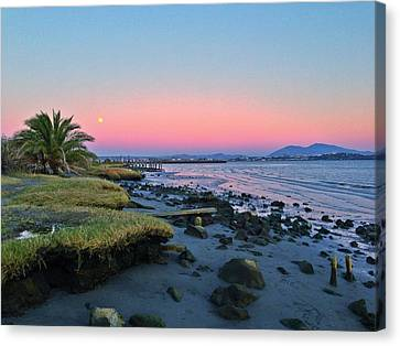 Full Moon Canvas Print by Brian Maloney