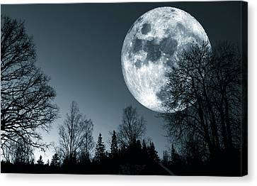 Full Moon Over Dark Forest Canvas Print by Christian Lagereek