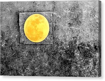 Full Moon Canvas Print by Rebecca Sherman