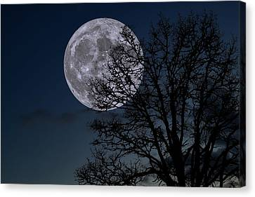 Canvas Print featuring the photograph Full Moon Rising by Dennis Bucklin