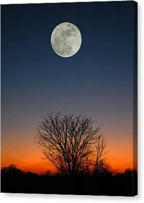 Full Moon Rising Canvas Print by Raymond Salani III