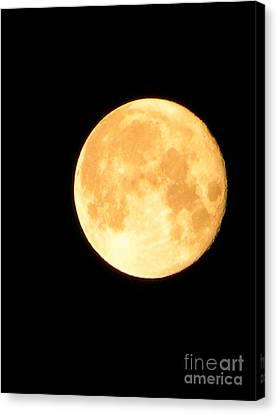 Full Moon Saturday Night Canvas Print by Matthew Seufer