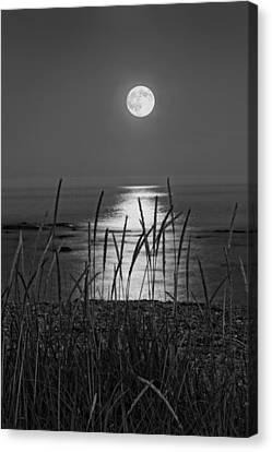 Sea Moon Full Moon Canvas Print - Full Moon Seawall Beach Acadia National Park by Keith Webber Jr