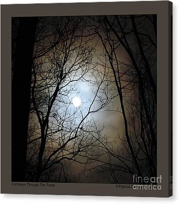 Full Moon Through The Trees Canvas Print by Patricia Overmoyer