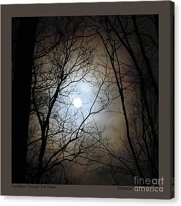 Full Moon Through The Trees Canvas Print