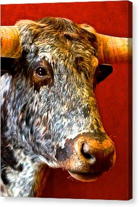 Full Of Bull Canvas Print