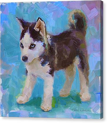 Alaskan Husky Sled Dog Puppy Canvas Print by Karen Whitworth