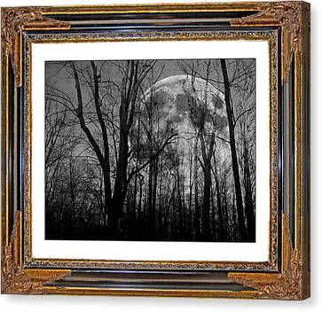 Ghost Story Canvas Print - Full Of Possibilities  by Betsy Knapp