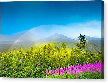 Full Spectrum Rainbow Canvas Print