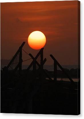 Canvas Print featuring the photograph Full Sun by Leticia Latocki