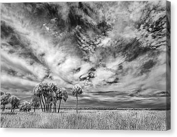 Fun Sky Canvas Print by Jon Glaser