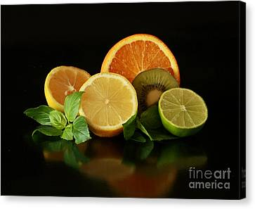 Fun With Citrus And Kiwi Fruit Canvas Print by Inspired Nature Photography Fine Art Photography