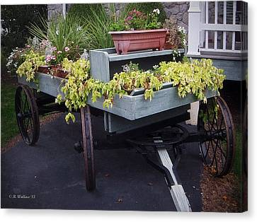 Funeral Wagon Canvas Print by Brian Wallace