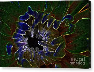 Canvas Print featuring the photograph Funky Flower by Judy Wolinsky