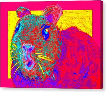 Funky Guinea Pig Canvas Print