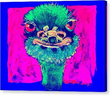 Funky Ostrich Cool Dude Art Prints Canvas Print