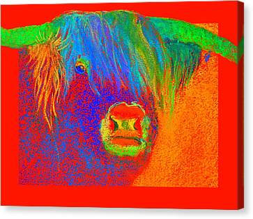 Funky Scottish Highland Cow Wildlife Art Prints Canvas Print