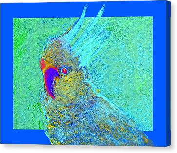 Yellow Beak Canvas Print - Funky Sulphur Crested Cockatoo Bird Art Prints by Sue Jacobi