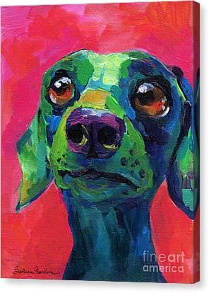 Funny Dachshund Weiner Dog Canvas Print by Svetlana Novikova