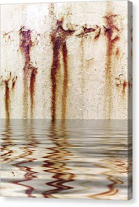 Funny Dance In Cold Water Canvas Print by Gun Legler