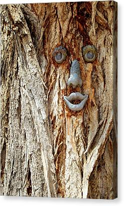 Funny Face On A Tree Trunk, Gallup, New Canvas Print by Julien Mcroberts