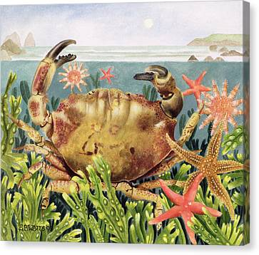 Furrowed Crab With Starfish Underwater Canvas Print