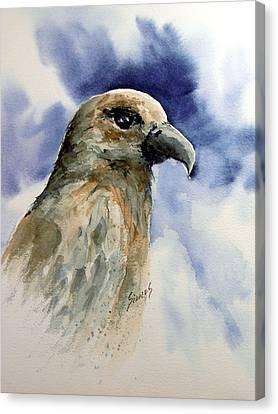 Fury Canvas Print by Sam Sidders