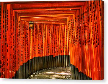 Fushimi Inari Canvas Print by Jonah  Anderson