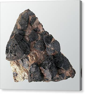 Gadolinite In Rock Groundmass Canvas Print