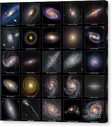 Galaxy Collection Canvas Print by Antony McAulay