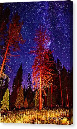 Canvas Print featuring the photograph Galaxy Stars By The Campfire by Jerry Cowart