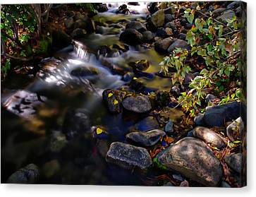 Galena Creek Fall Waterfall Canvas Print by Scott McGuire