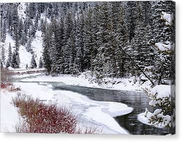 Gallatin River Canvas Print by Meagan Suedkamp