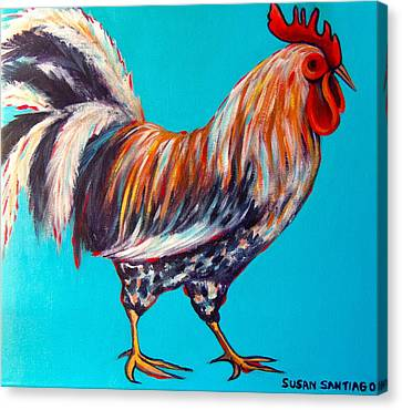 Gallo Canvas Print