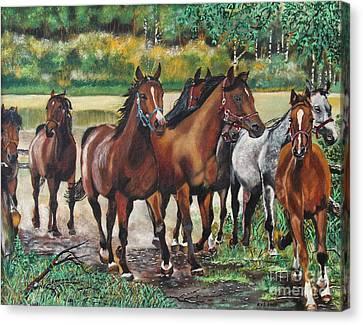 Galloping Horses Canvas Print by Ryszard Sleczka