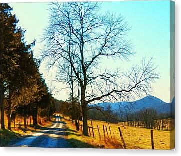 Gap Road Canvas Print by Joyce Kimble Smith