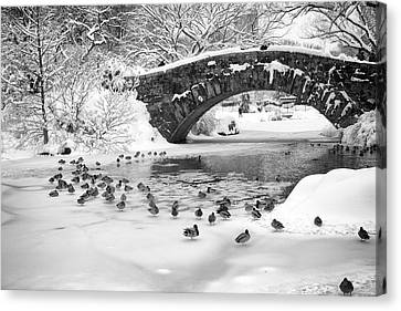 Canvas Print featuring the photograph Gapstow Bridge In Snow by Dave Beckerman