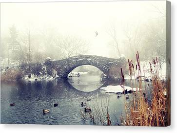 Gapstow Geese  Canvas Print by Jessica Jenney