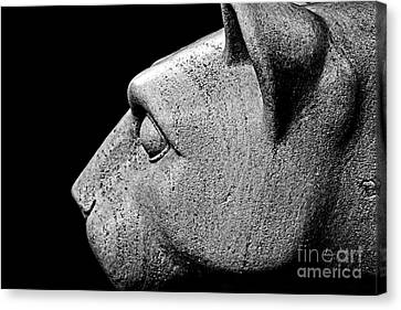 Garatti's Lion Canvas Print by Tom Gari Gallery-Three-Photography