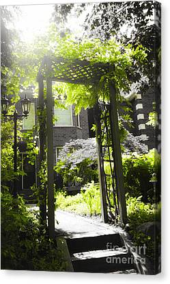 Garden Arbor In Sunlight Canvas Print