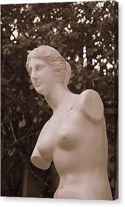 Garden Bust Canvas Print by George Mount