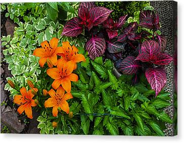 Canvas Print featuring the photograph Garden Colors by Phil Abrams
