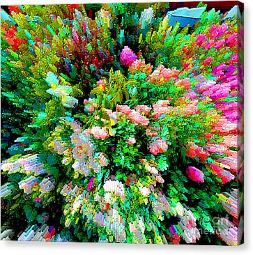 Garden Explosion Canvas Print by Alys Caviness-Gober