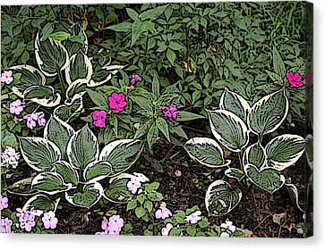 Garden Flowers Canvas Print by Donald Williams