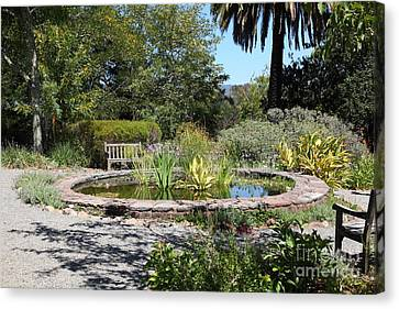 Garden Fountain At Historic Jack London Cottage In Glen Ellen California 5d24545 Canvas Print by Wingsdomain Art and Photography