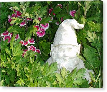 Canvas Print featuring the photograph Garden Gnome by Charles Kraus