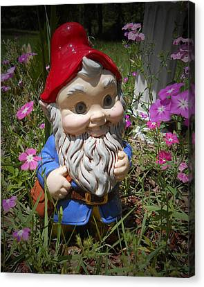Garden Gnome Canvas Print