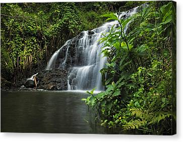 Garden Isle Waterfall Canvas Print by Hawaii  Fine Art Photography