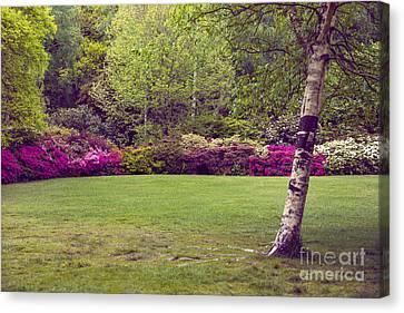 Garden Landscape Canvas Print by Svetlana Sewell